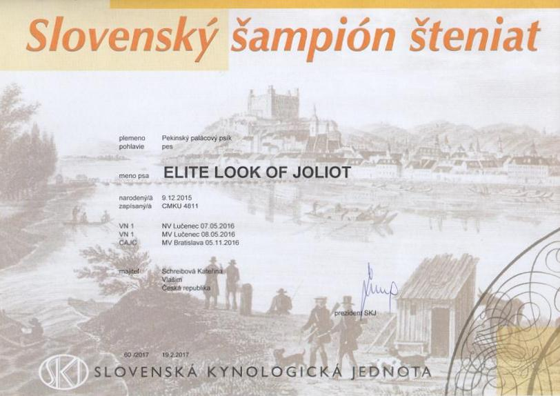 Puppy Champion Slovakia - ELITE LOOK OF Joliot